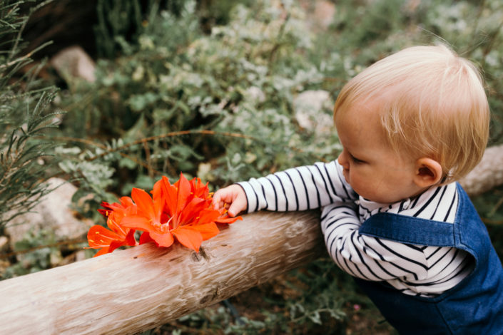 Girl watching the flowers by Ewa Jones Photography | Basingstoke Photography