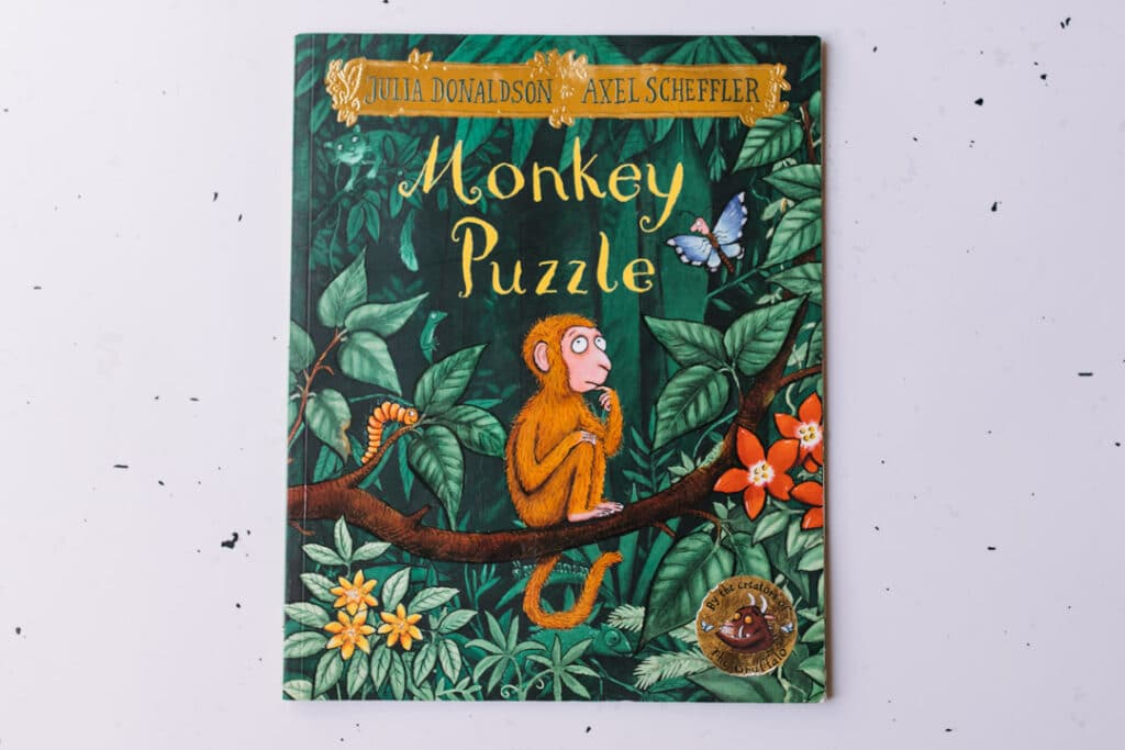 Monkey Puzzle Book. 30 books to read for 0-5 year old - Part 1. Ewa Jones Photography